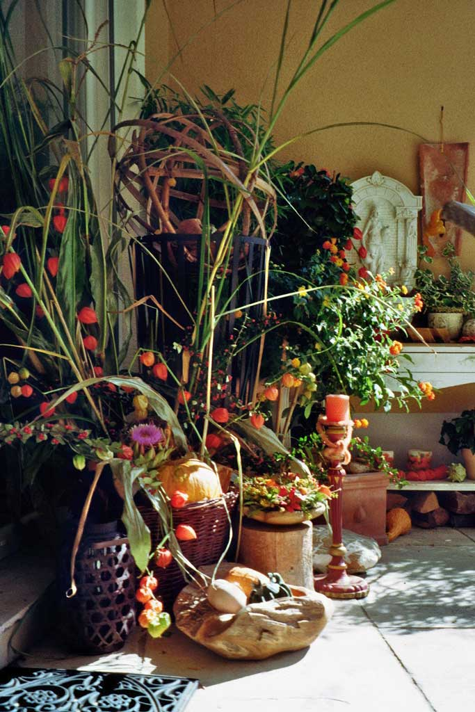 Herbst-imm016_20A