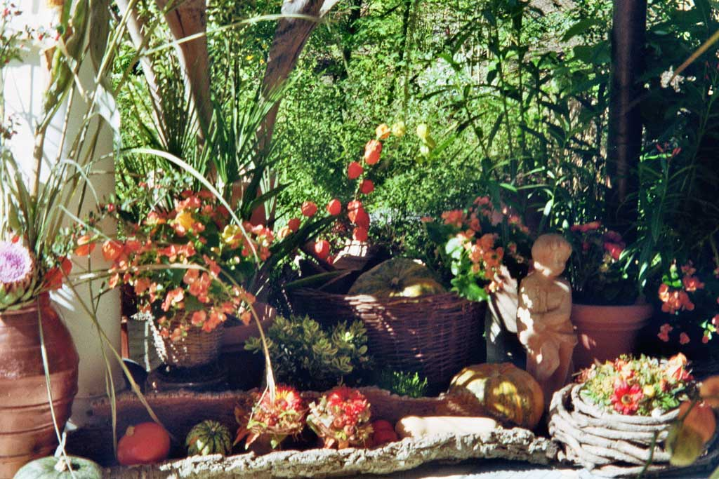 Herbst-imm025_11A